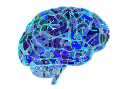 Rehabilitation for brain rehabilitation